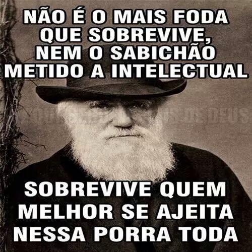 Em bom português.
