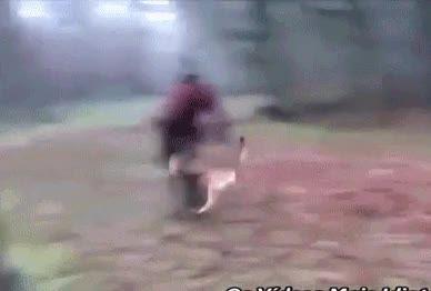 Los perros del ejército no miden su fuerza, ojo al placaje