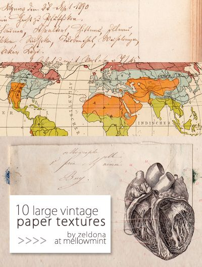 94 best vintagelabels images on pinterest map projects treasure this set contains two old world maps vintage handwritten paper textures an anatomic drawing of a human he gumiabroncs Images