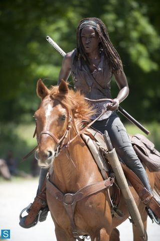 Michonne's horse Flame (Chase) in The Walking Dead