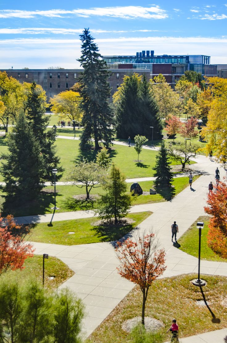 Central Michigan University Campus
