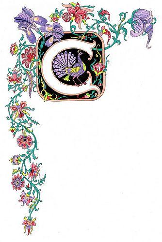Illuminated Letter C w/draped scroll