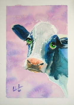 cow watercolour paintings