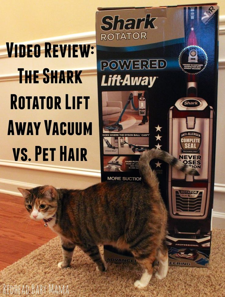 The Shark Lift Away Vacuum is a transformer! Takes on Pet hair with no problem... BETTER than a Dyson Animal.