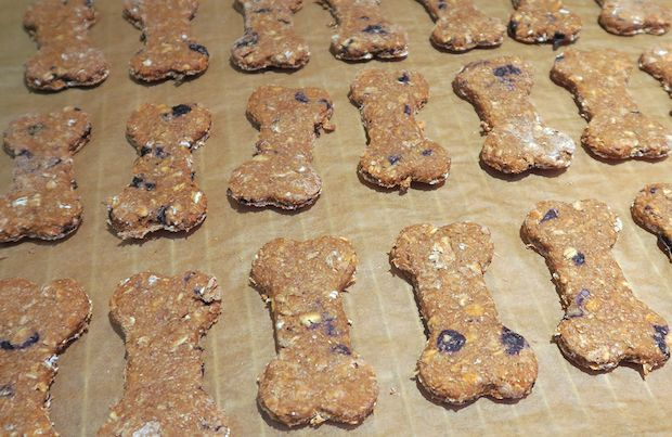 Breakfast Bones.  Give your dog plenty of energy and help him stay full with this homemade dog treat recipe for breakfast bones.