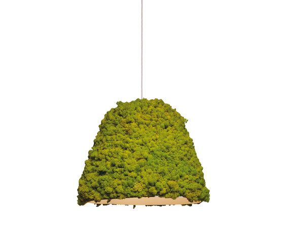 Moss Hanging lamp - General lighting by Verde Profilo | Architonic