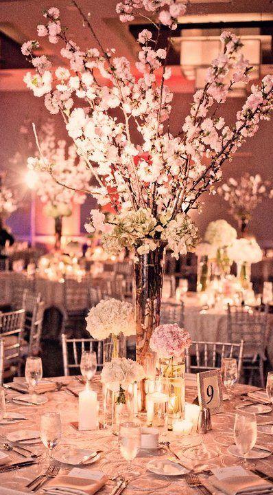 Japanese Cherry Bloosom..LOVE
