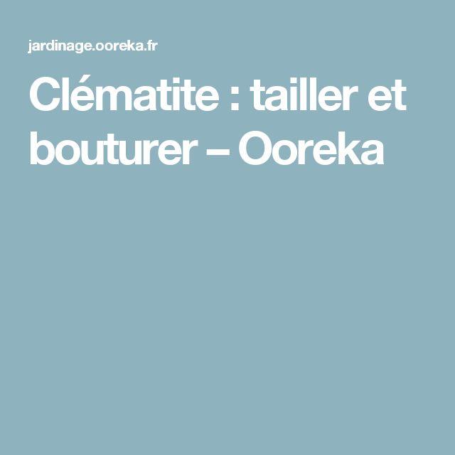 Clématite: tailler et bouturer – Ooreka