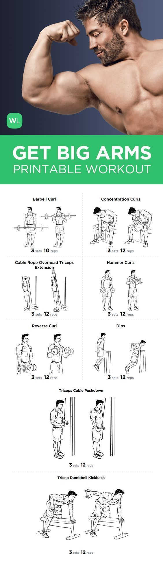 for a FREE PDF of this Bog Arms Bicep and Tricep printable workout with easy-to-follow exercise illustrations.