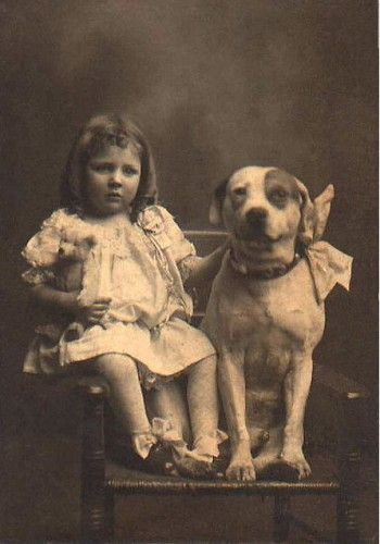 Los Pitbull han sido retratados como animales peligrosos, violentos y poco confiables en estos últimos tiempos. Sin embargo, lo que la mayoría no conoce acerca de esta raza es que durante 150 años, los Pitbull eran considerados el perro ideal para cuidar de los niños de la casa.