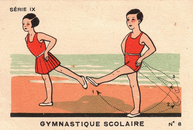 gymnastique scolaire