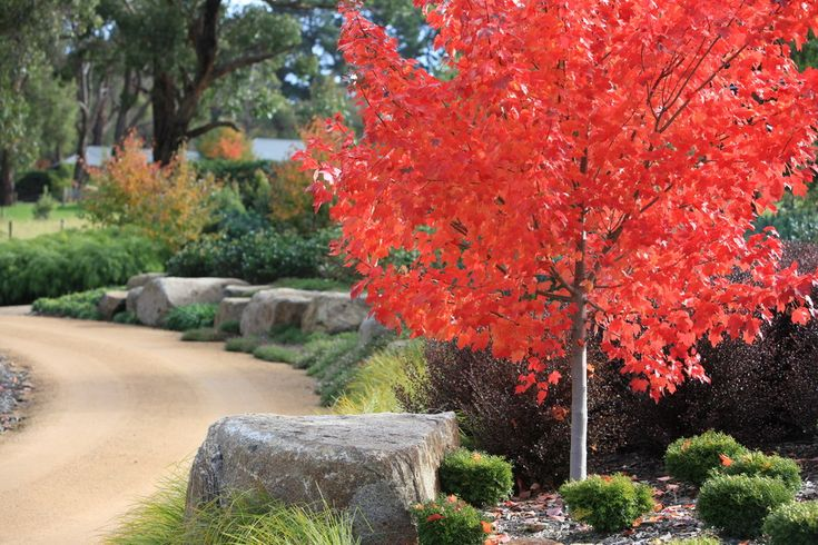 Robert Boyle Landscaping-Red Hill 1