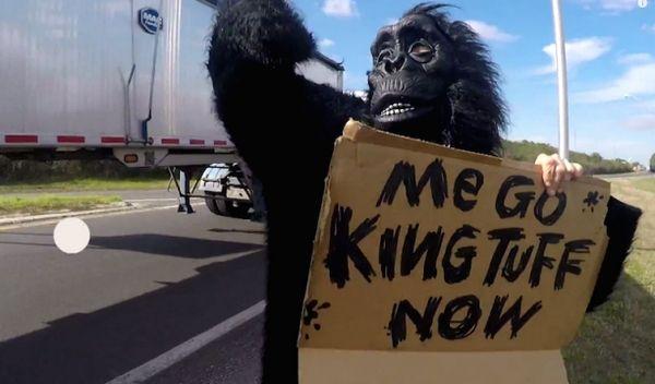 King Tuff - Madness - Gorillas im Nebel - http://www.musikblog.com/2015/04/king-tuff-madness-gorillas-im-nebel/ #KingTuff