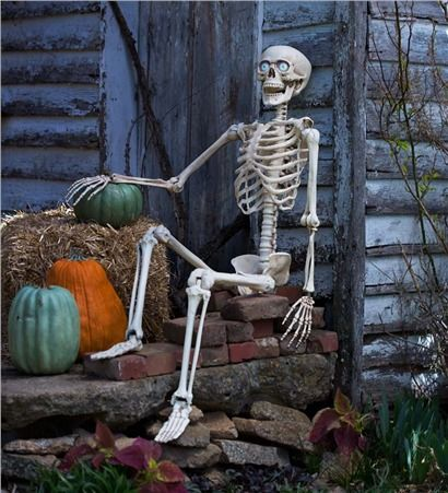 I can't wait to do something like this with my new posable skeleton. Halloween fun!