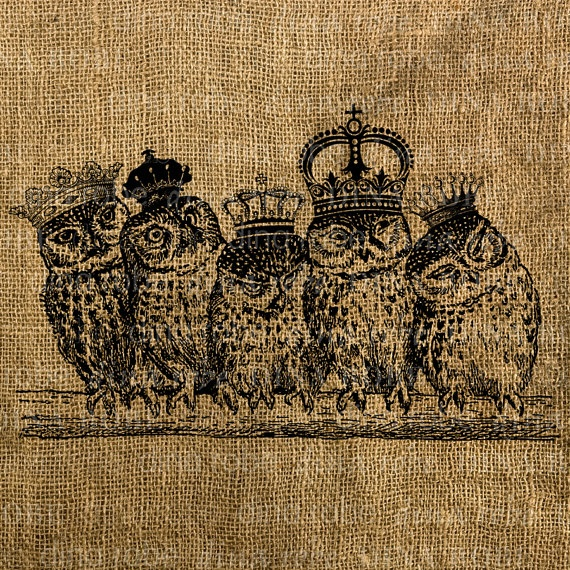 Owl transfer pattern. how cute with all of their crowns on