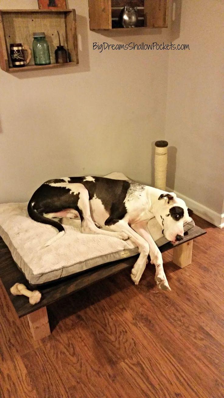 Big Dreams, Shallow Pockets: DIY XL Dog Platform Bed - Grand total: $67.00