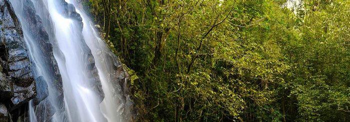 Best+Cairns+Tablelands+Waterfalls