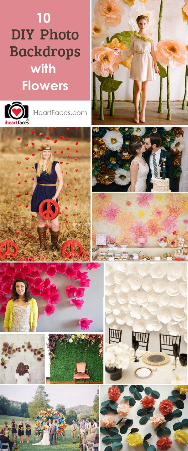 10 Ideas for DIY Photography Backdrops with Flowers