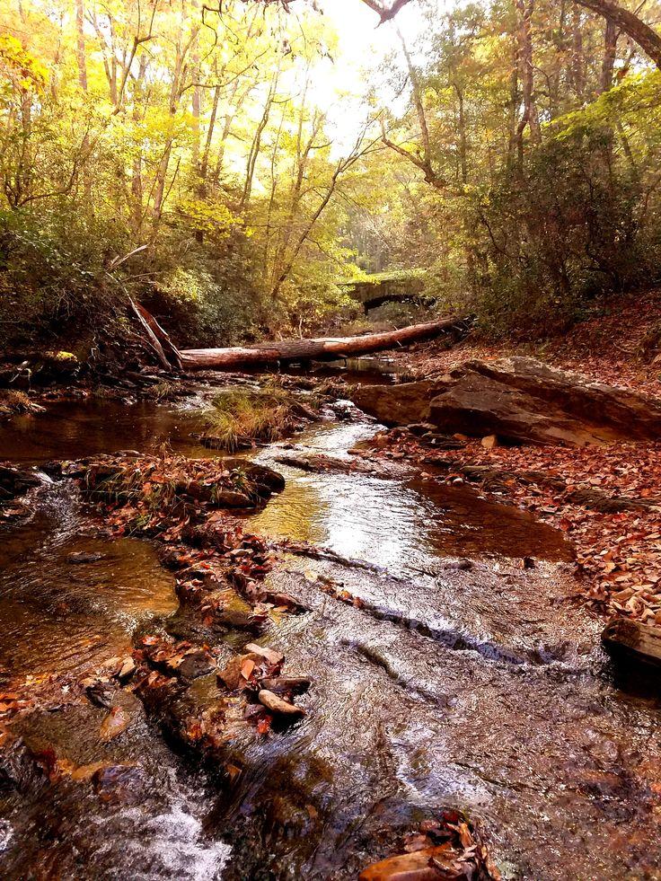 Fall colors along Otter Creek Blue Ridge Parkway NP Virginia [OC] [4032x3024] http://ift.tt/2lmVr6U