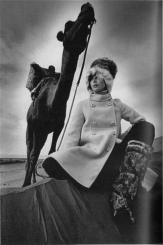 Looking at the camel and the shot perspective, not at the model. Jean-Loup Sieff, Vogue, Morocco 1967