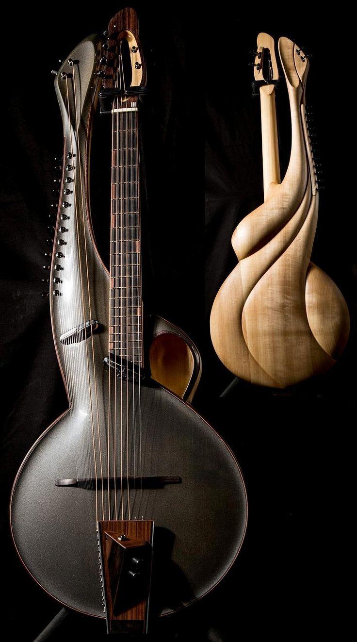 Andre instruments - Multi no.2 Archtop w/sympathetics  --- https://www.pinterest.com/lardyfatboy/