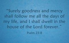 Short Bible Quotes About Success