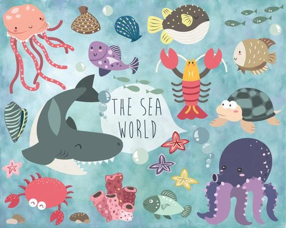 You Will Receive 30 Beautifully Rendered Clipart Saved Separately In 8 X 8 Png Files Transparent Background Which Sea Life Clipart Sea World Animal Clipart