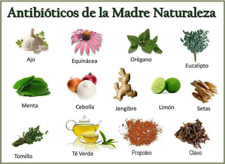 antibióticos de la madre naturaleza