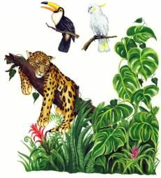 Image result for how to draw a tropical jungle mural on a wall