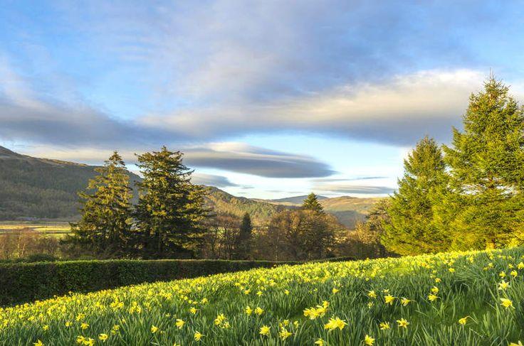Penmaenpool Forest, País de Gales