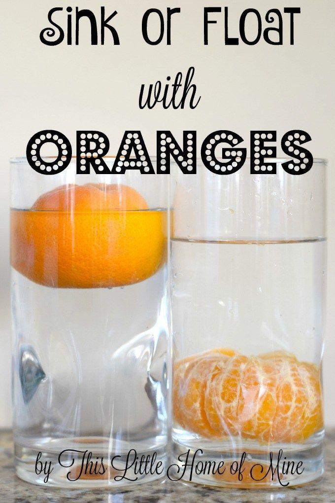 Sink or Float with Oranges - Science Experiment by This Little Home of Mine