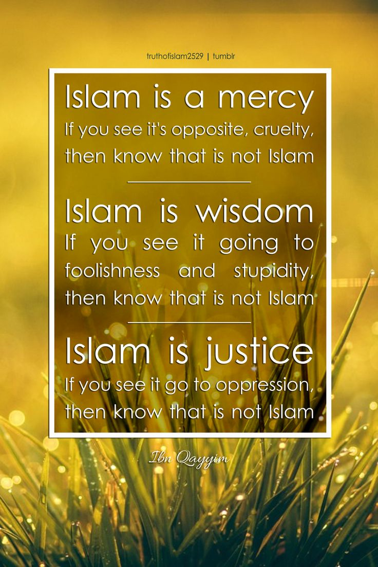 Ibn Qayyim al Jawziyya said: Islam is a mercy. If you see it's opposite, cruelty, then know that is not Islam. Islam is wisdom. If you see it going to foolishness and stupidity, then know that is not...