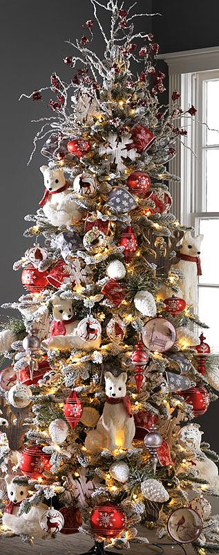 Christmas is Coming   Purely Inspiration