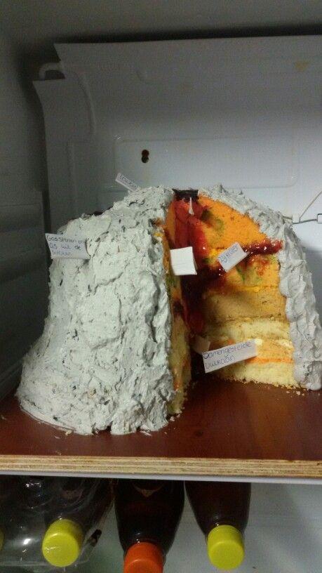 Gemaakt van taart door mijn dochter van 13  . Vulkaan schoolopdracht.