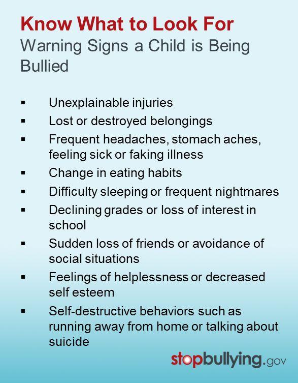 bullying aggression essay
