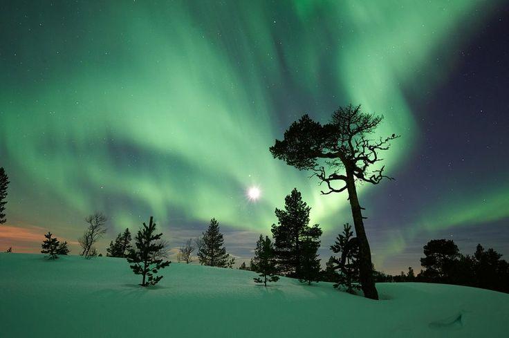 Månen lyser opp og nordlyset danser over himmelen på Vulusjøen i Levanger. (Foto: Johan Arnt Nesgård)