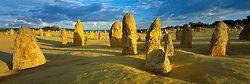 Desert Guardians - The Pinnacles, Nambung National Park, Western Australia - Australia