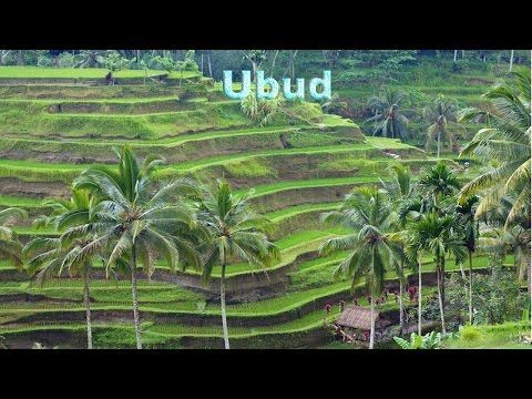 Top 10 Tourist Attractions in Indonesia
