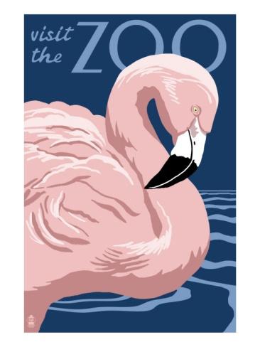 Flamingo - Visit the Zoo Premium Poster at Art.com