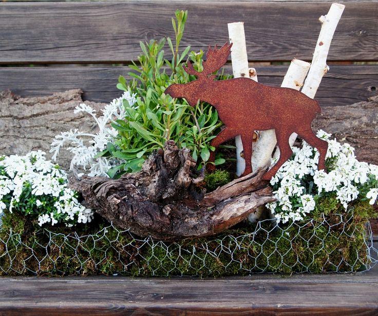 Alce al verde! Composizione realizzata con rami di betulla, muschio, Cineraria Marittima, Iberis Sempervirens e Schleifenblume #sharenatalealverde