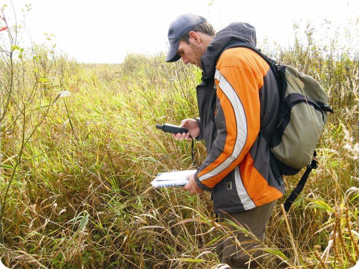 Dokładne badania środowiskowe z użyciem zaawansowanego sprzętu przeznaczonego do tego celu, pozwalają na określenie czynników szkodliwych.