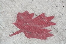 """The Canadian Identity, as it has come to be known, is as elusive as the Sasquatch and Ogopogo. It has animated--and frustrated--generations of statesmen, historians, writers, artists, philosophers, and the National Film Board...Canada resists easy definition.  —Andrew Cohen, The Unfinished Canadian: The People We Are"