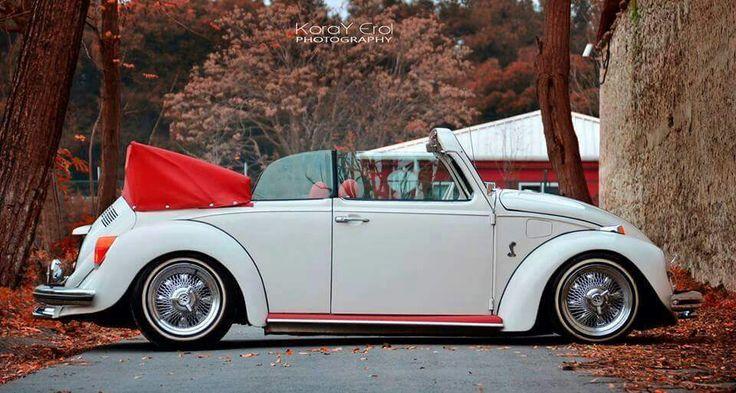 Dream   Beetle  .