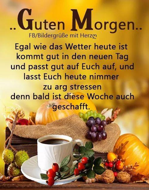 Pin Von Sweety H Auf Guten Morgen Guten Morgen Lustige Guten Morgen Bilder Lustige Guten Morgen Spruche