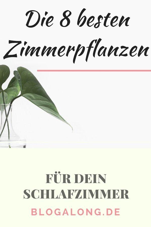 Die 8 Besten Zimmerpflanzen Fur Dein Schlafzimmer Schlafzimmer Pflanzen Zimmerpflanzen Blumen Schlafzimmer