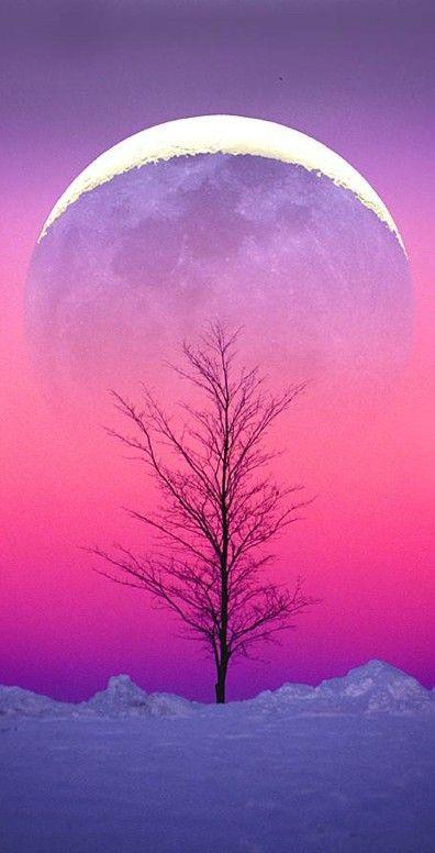 Winter moonrise • photo: Larry Landolfi on 500px