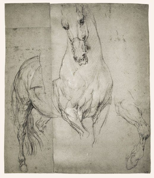 Van Dyck-Studies de un caballo-1633