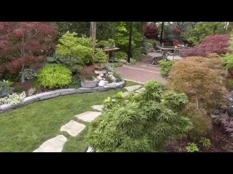 The Summer Garden - Japanese Maple Garden - Back yard tour - YouTube