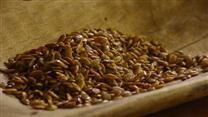 Roasted Pumpkin Seeds - Allrecipes.com