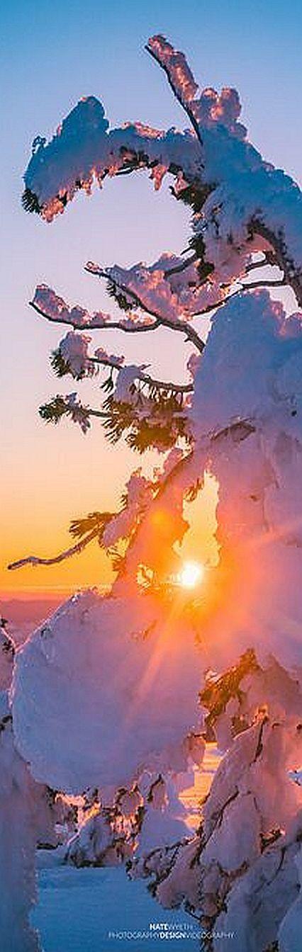 Tumalo Mountain Sunset - OREGON - Mt. Bachelor ©-Nate-Wyeth #Alpenglow Snowshoeing skiing   Bend Tumalo touring skinning mountain backcountry Winter   Sunrise Snow Outdoor usa america
